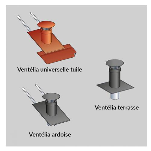 Ventelia 3d